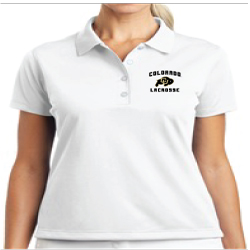Ladies Embroidered Nike Tech Basic Dri-Fit Polo
