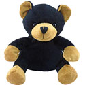 "6"" Plush Black Bear"